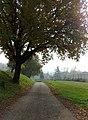 Sentiero 1.jpg