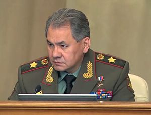 Eurasian (mixed ancestry) - Russia's Defense Minister Sergey Shoygu. His father was Tuvan, while his mother was Russian.