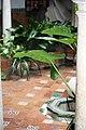 Sevilla 3001 13.jpg
