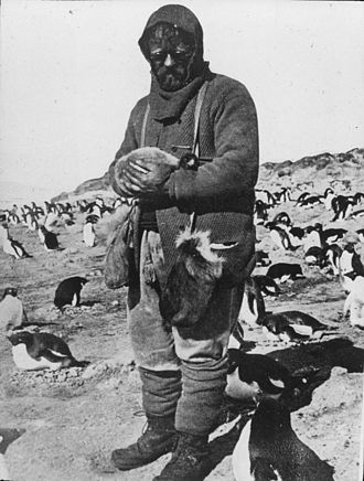 James Murray (biologist) - James Murray with Adélie Penguin chick (Nimrod-Expedition)