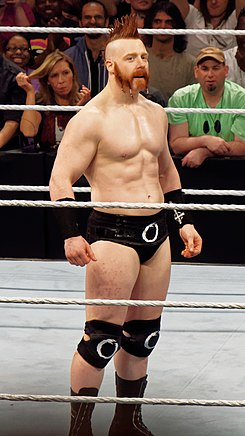 Sheamus March 2015.jpg