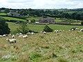 Sheep overlooking Cat Hill Farm barn conversion - geograph.org.uk - 934924.jpg