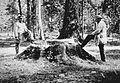 Sienkiewicz.Gloger.1882.jpg