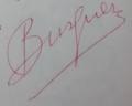 Signatura Burguera.png