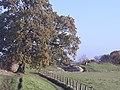 Silchester Roman city walls 44.jpg