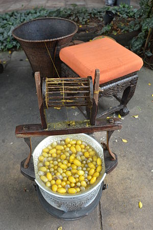 Thai silk - Silk cocoons and spool at Jim Thompson House