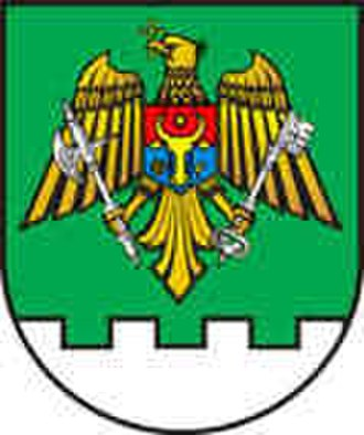 Coat of arms of Moldova - Image: Simbolul oficial al Serviciului de Graniceri