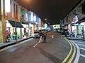 Singapore 219955 - panoramio (2).jpg