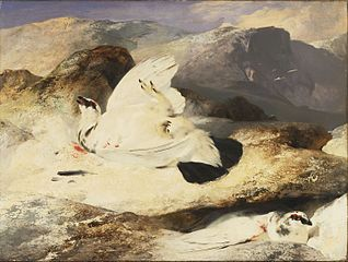 Ptarmigan in a Landscape