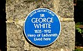 Sir George White plaque near Broughshane - geograph.org.uk - 1233833.jpg