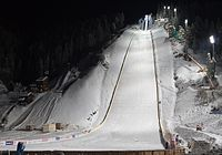 Ski flying Vikersund 2011.jpg