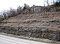Slade Formation over Cowbell Member (Mississippian; Route 519 Outcrop, south of Morehead, Kentucky, USA) 6 (44452374910).jpg