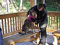 Sled Dog Discovery & Musher's Camp 29.jpg