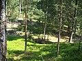 Smārde parish, Latvia - panoramio (2).jpg