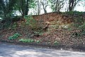 Small sandstone cliff, Horsmonden Rd (2) - geograph.org.uk - 1274830.jpg