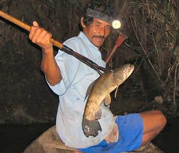 Spear fishing Peru cropped
