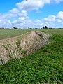 Spring Ditch - geograph.org.uk - 762586.jpg