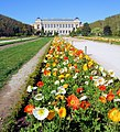 Spring In The Jardin des Plantes - Paris 2013.jpg