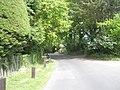 Spring in Salterns Lane - geograph.org.uk - 1299796.jpg