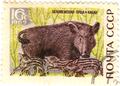 Stamp-ussr1969-belovyezhskaya-boar.png