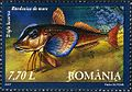 Stamps of Romania, 2007-010.jpg