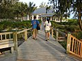 Starr-080531-4690-Eragrostis variabilis-habit with Wayne and Kim on boardwalk-Clipper House Sand Island-Midway Atoll (24615105170).jpg