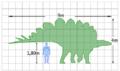 Stegosaurus size.png