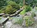 Steingarten im Botanischen Garten Oslo.JPG