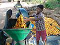 Step 1 - Cashew fruit being loaded in the motor crusher for crushing.jpg