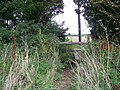 Stile, Jubilee Trail - geograph.org.uk - 1027988.jpg