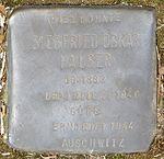Stolperstein Offenburg Siegfried Oskar Hauser.jpg