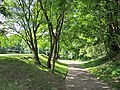 Stonelaw Woods (geograph 2977493).jpg
