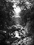 Stony Creek, Stanwell Park (4903841842).jpg