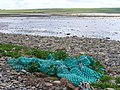 Storm Beach by Ling Holm - geograph.org.uk - 485282.jpg