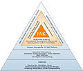 Strategie der Professional Applied Kinesiology.jpg