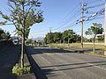 Street view near Nakatomi Memorial Medicine Museum 2.jpg