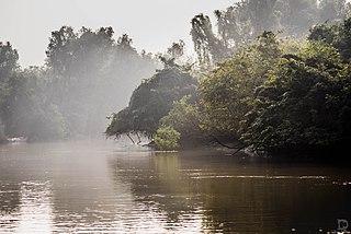 Bhitarkanika National Park National park in Odisha, India