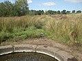 Sutton Park - geograph.org.uk - 1481781.jpg
