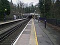 Sydenham Hill stn look east2.JPG