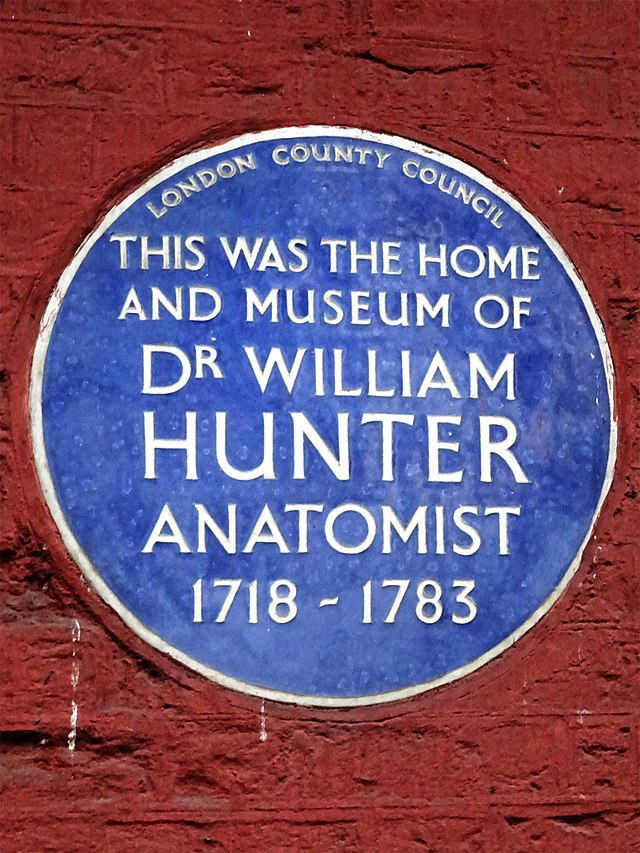 William Hunter blue plaque - This was the home and museum of Dr William Hunter anatomist 1718-1783