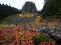 Table Rocks Wilderness (9503309690).jpg
