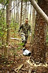 Tactical Recovery of Aircraft and Personnel Mission- Bold Alligator 141106-M-SW506-023.jpg