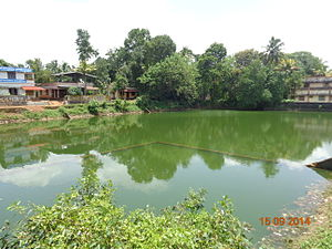 Sreevallabha Temple - Image of the temple tank located outside the temple premises