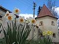 Terebowla klasztor karmelitow IMG 1756 61-250-0004.jpg
