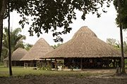 Thatched roof houses in Guyana-