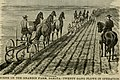 The American farmer. A complete agricultural library, with useful facts for the household, devoted to farming in all its departments and details (1882) (14741203956).jpg