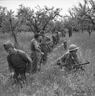 King's Own Royal Regiment (Lancaster) - Infantrymen of the 1st Battalion, King's Own Royal Regiment (Lancaster) start to dig trenches in an orchard near Vedrano, Italy, 21 April 1945.