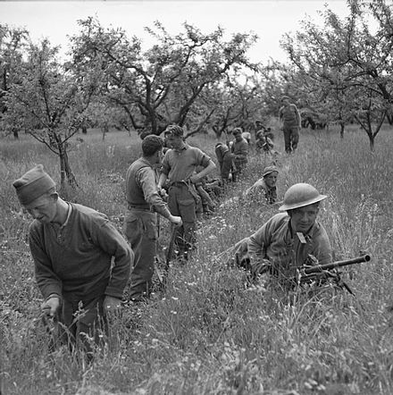 Infantrymen of the 1st Battalion, King's Own Royal Regiment (Lancaster) start to dig trenches in an orchard near Vedrano, Italy, 21 April 1945. The British Army in Italy 1945 NA24374.jpg