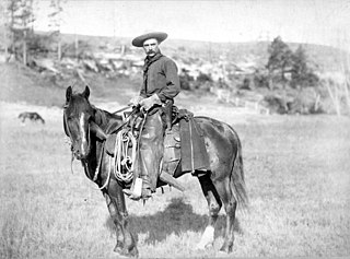 style of horseback riding which evolved from the ranching and warfare traditions
