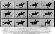 http://upload.wikimedia.org/wikipedia/commons/thumb/7/73/The_Horse_in_Motion.jpg/180px-The_Horse_in_Motion.jpg